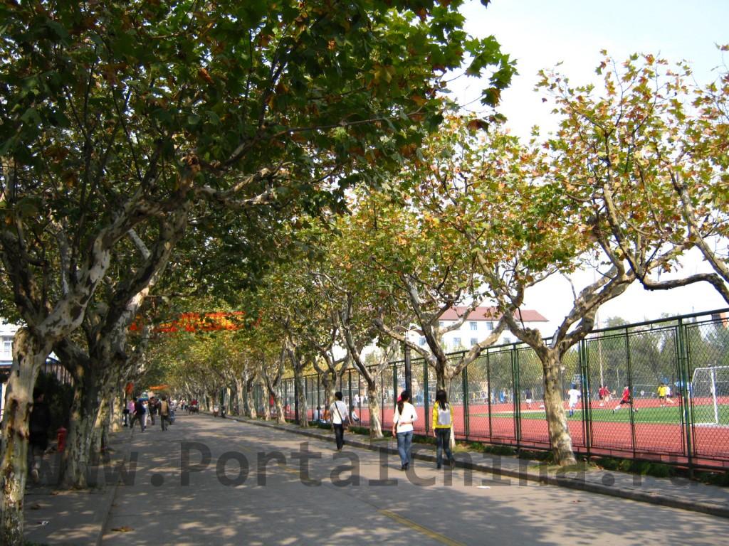 На территориях китайских ВУЗов имеются все условия для проведения досуга и отдыха: футбольные поля, волейбольные и баскетбольные площадки, сауна, столовая, кафе и ресторан и т.д.
