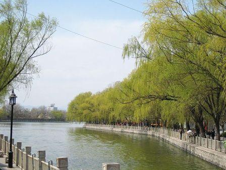 На фото: Парк Shichahai - одно из красивейших мест в городе
