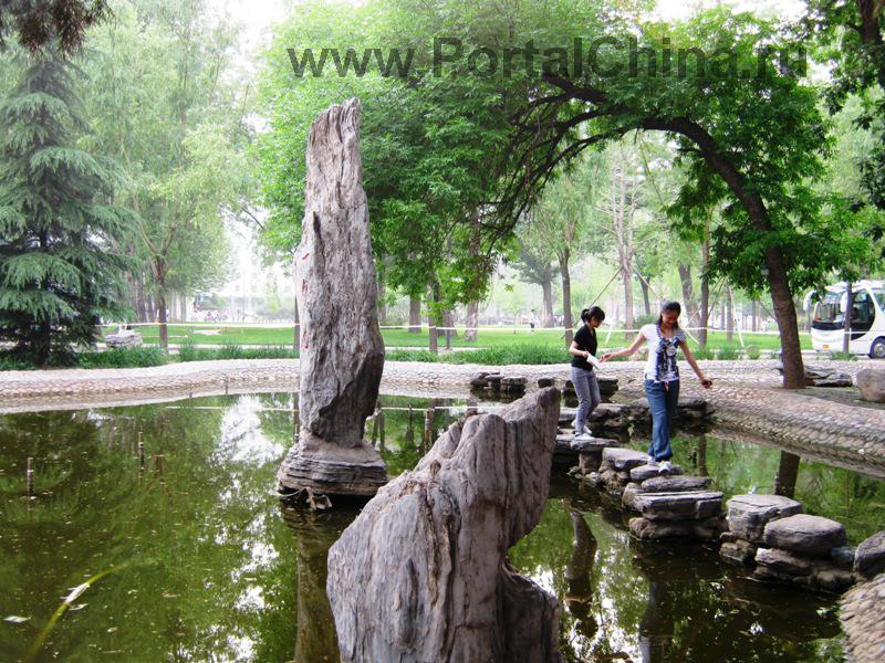 Народный Университет Китая (28)