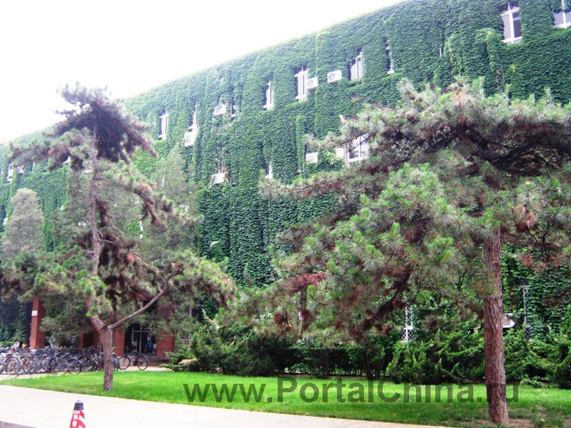 Народный Университет Китая (7)