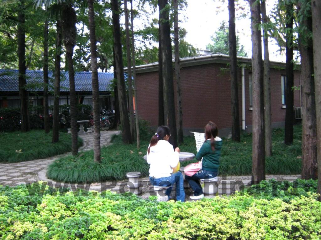 В Университете Фудань учатся иностранные и китайские студенты