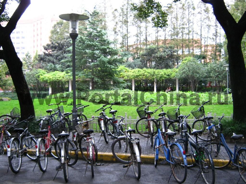 Велосипед - популярный способ передвижения по территории Университета Фудань