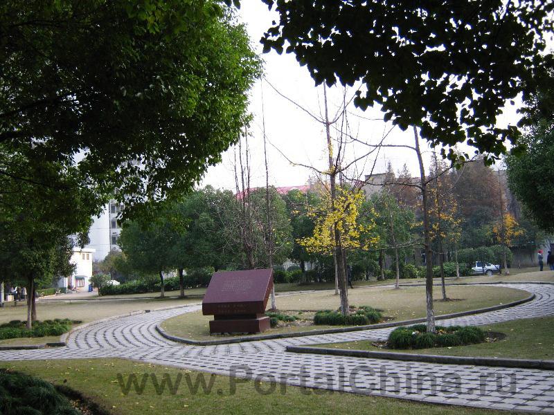 Donghua University (65)