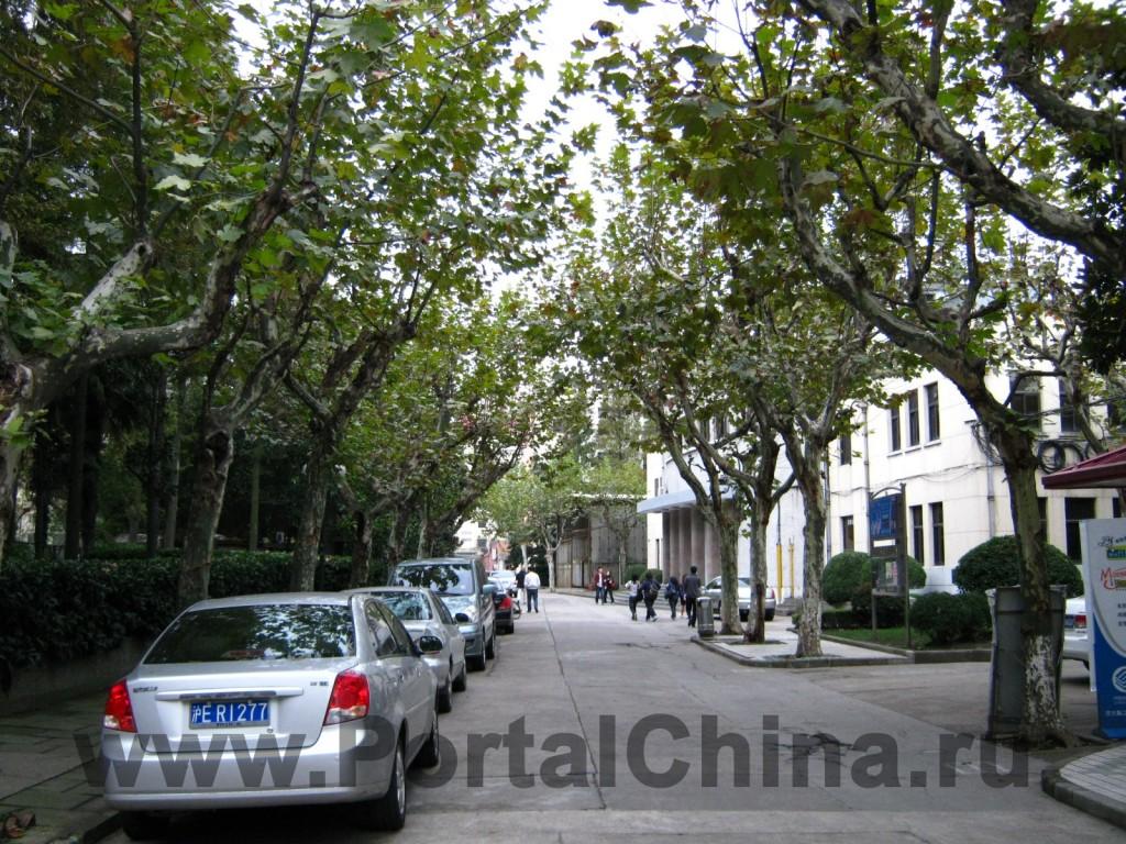 Аллеи и территория Шанхайского Транспортного (Цзяотун) Университета