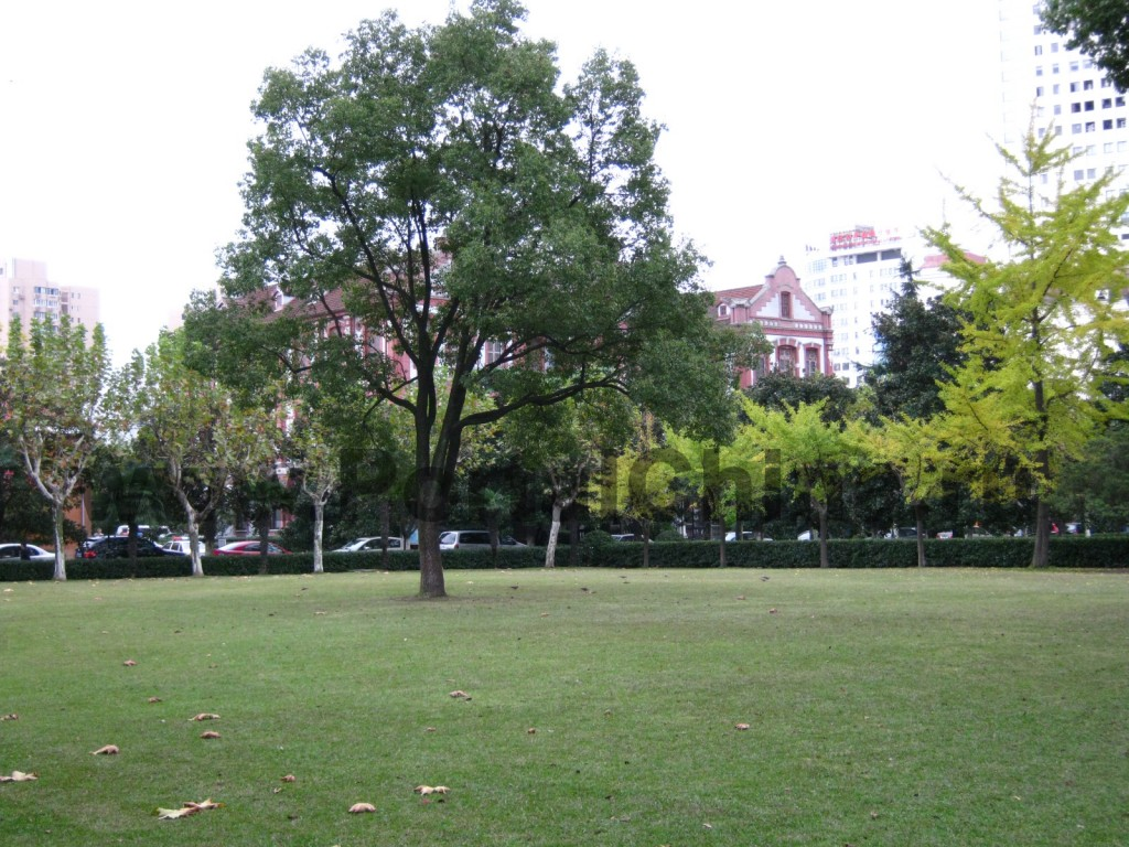 Зоны отдыха и лужайки на территории Шанхайского Транспортного (Цзяотун) Университета