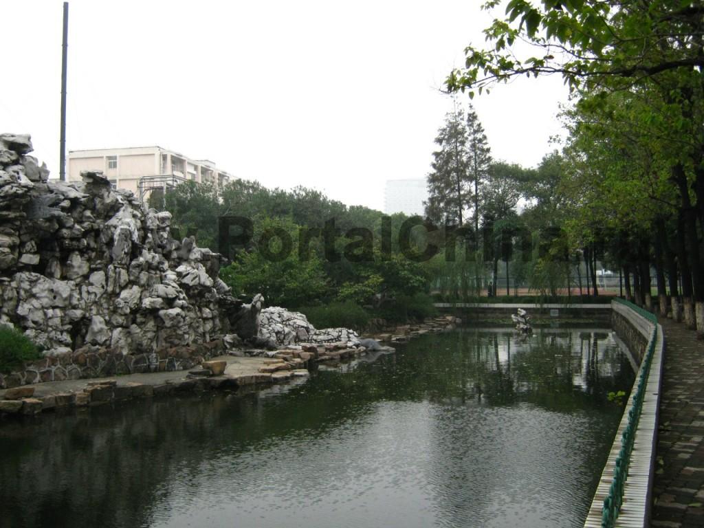Пруды и парки Шанхайского Университета