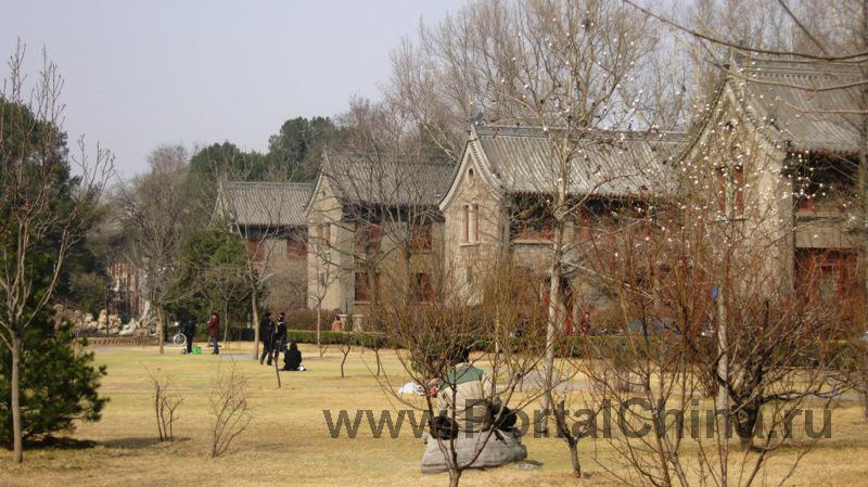 Пекинский Университет (15)