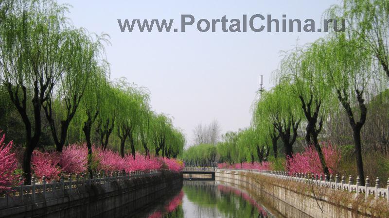Университет Цинхуа (35)