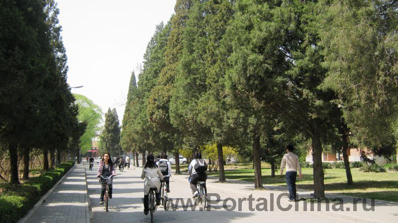 Университет Цинхуа (36)