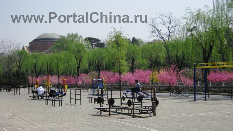Университет Цинхуа (40)