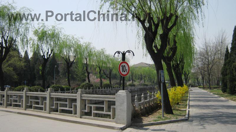 Университет Цинхуа (41)