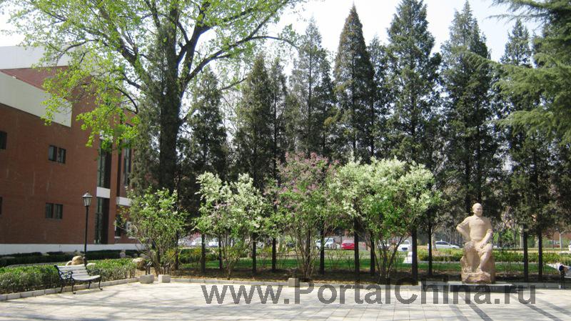 Университет Цинхуа (42)