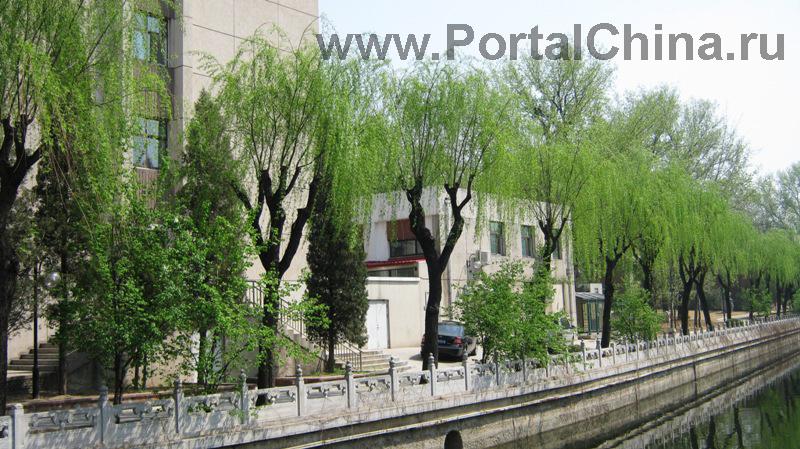 Университет Цинхуа (48)