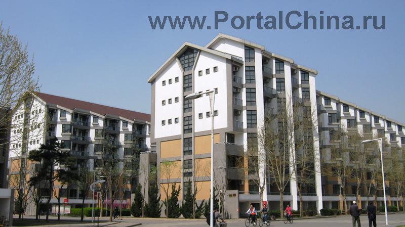 Университет Цинхуа (55)