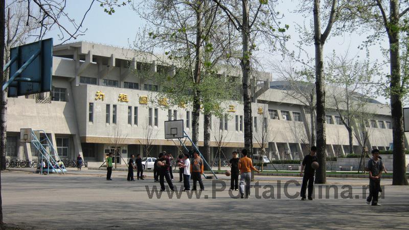 Университет Цинхуа (65)