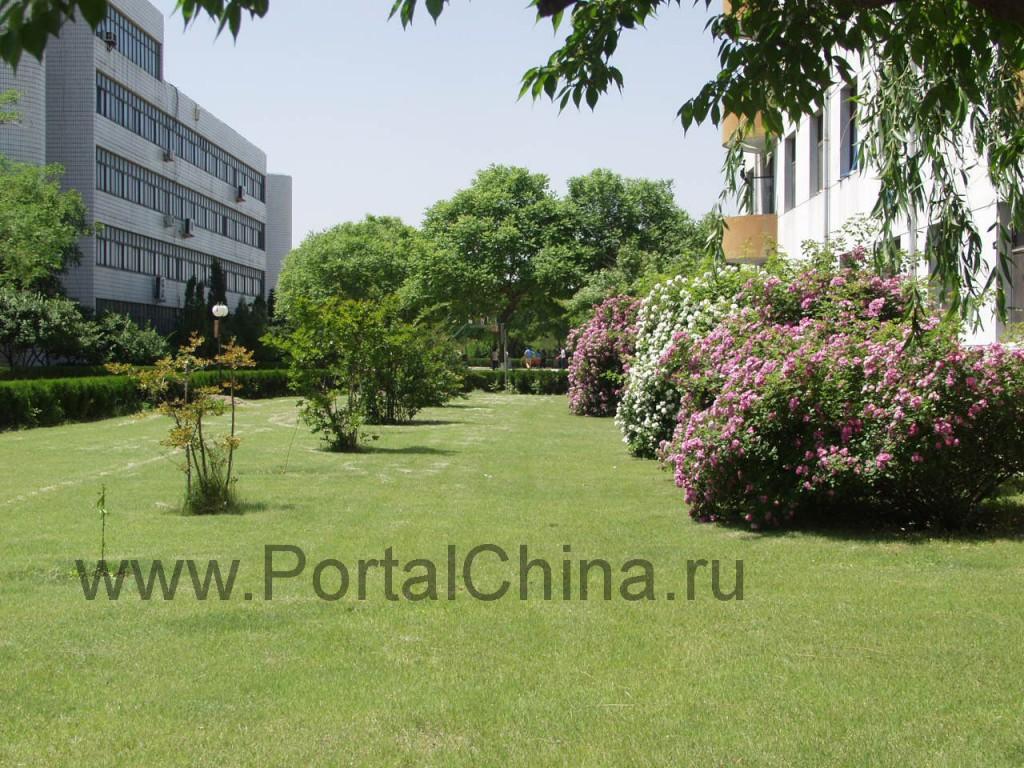 Хебейский профессиональный институт иностранных языков