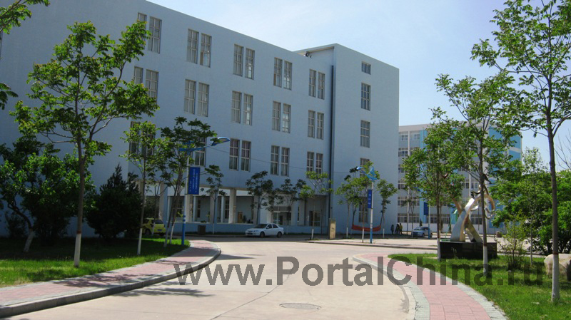 Hebei Institute (19)