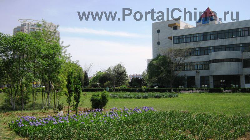 Hebei Institute (23)