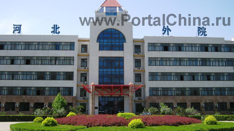 Колледж представляет собой государственный институт, где преподавание китайского языка ведется на профессиональной основе