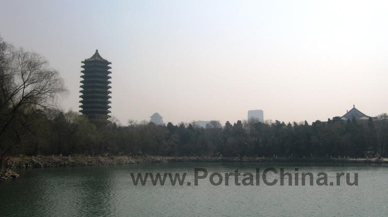 Peking University (11)