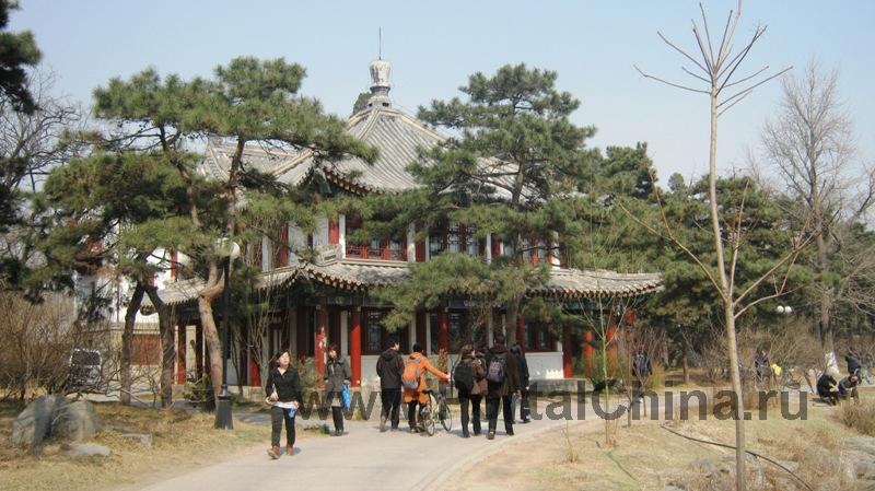 Peking University (16)