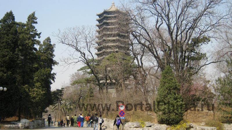 Пекинский Университет знаменит своим живописным кампусом, расположенным в красивейшей парковой зоне