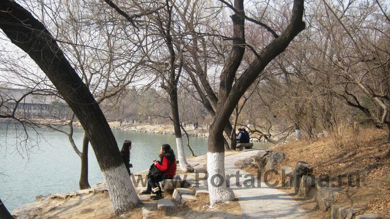 Peking University (8)
