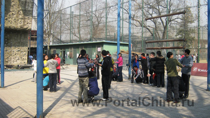 Peking University (9)