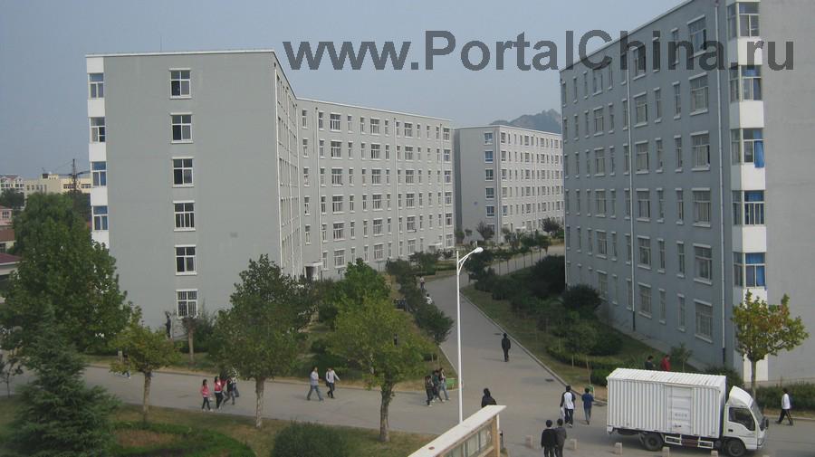 Qindao College (11)