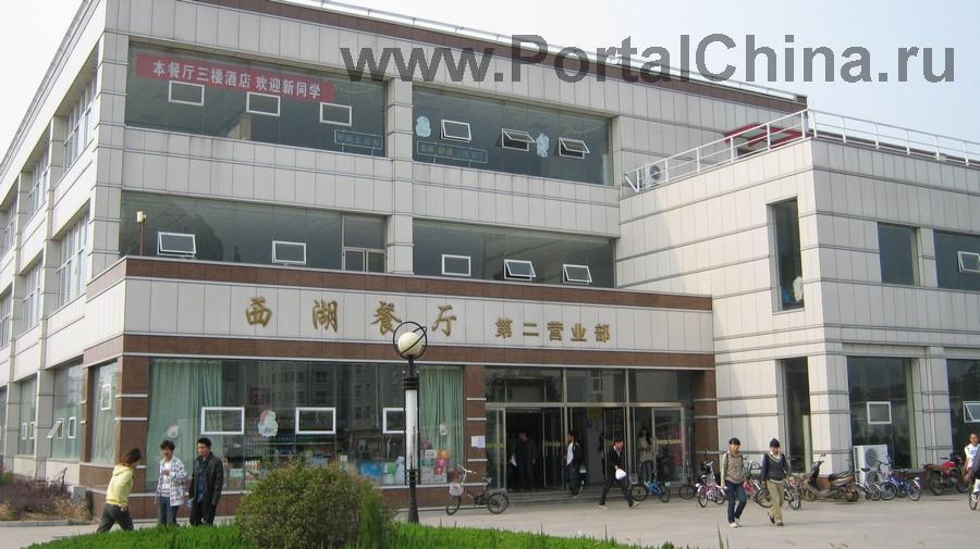 Qindao College (14)