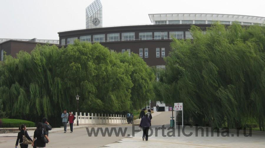 Qindao College (19)