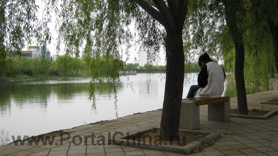 Qindao College (20)