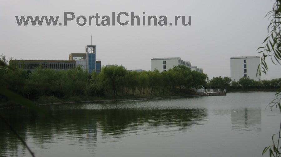 Qindao College (21)