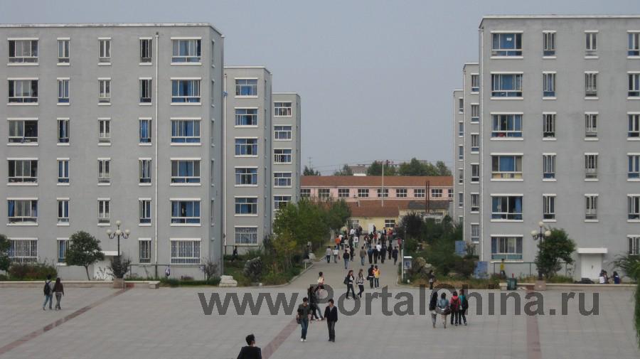 Qindao College (26)