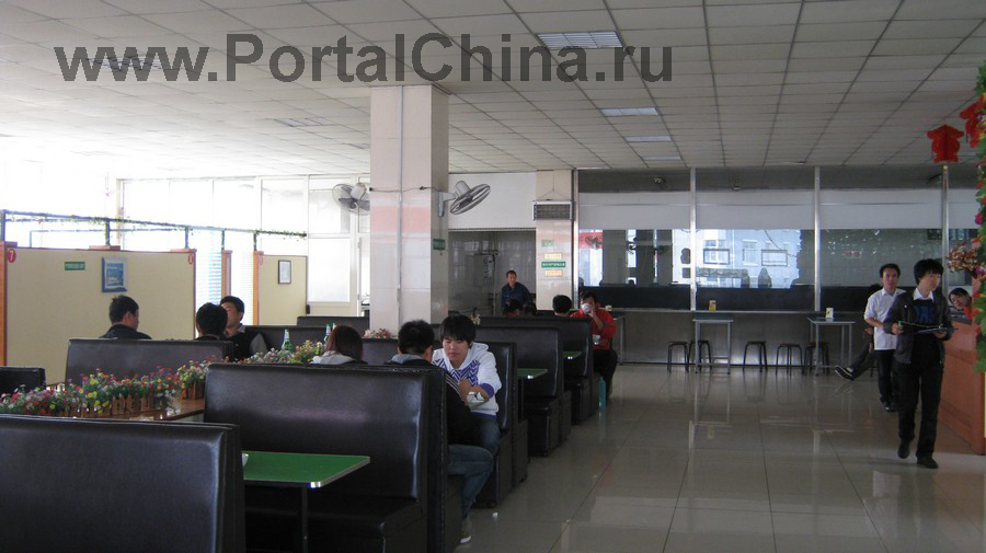 Qindao College (31)