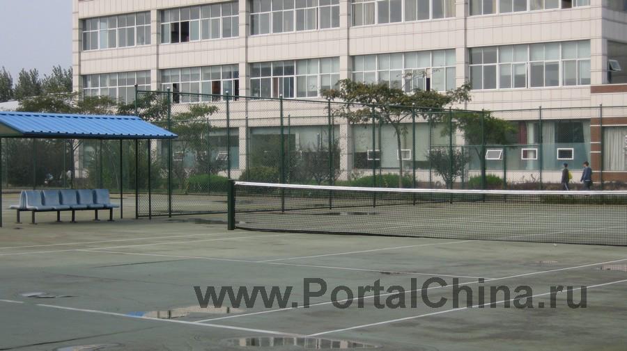 Qindao College (32)