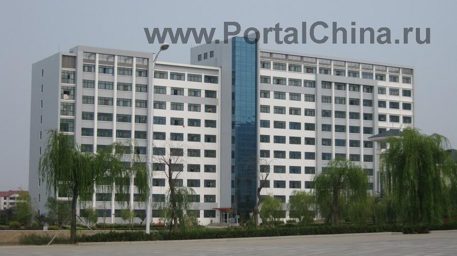 Qindao College (33)