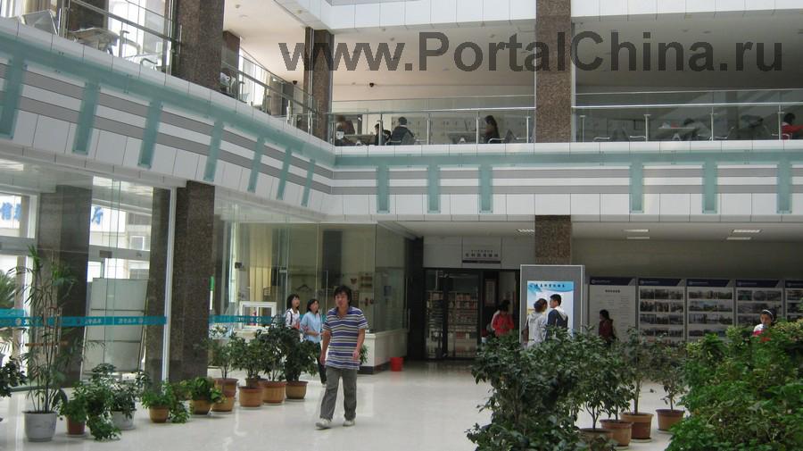 Qindao College (7)