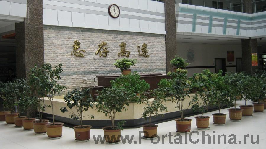 Qindao College (8)
