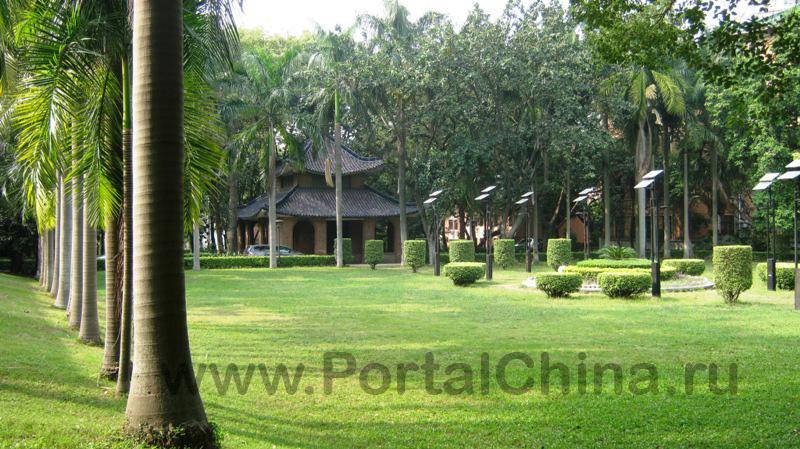 Sun Yat-sen University (31)