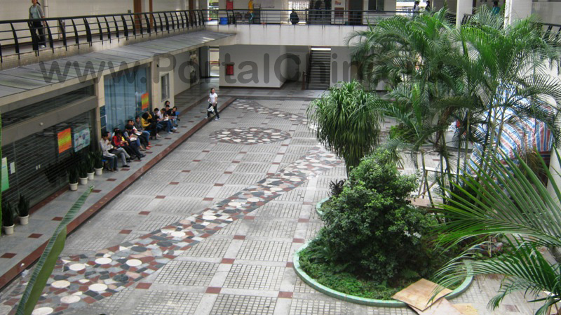 Sun Yat-sen University (38)