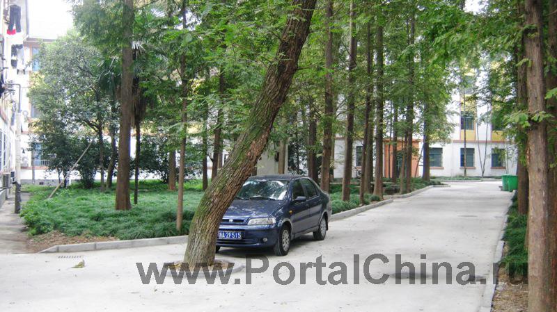 Zhejiang-University (28)