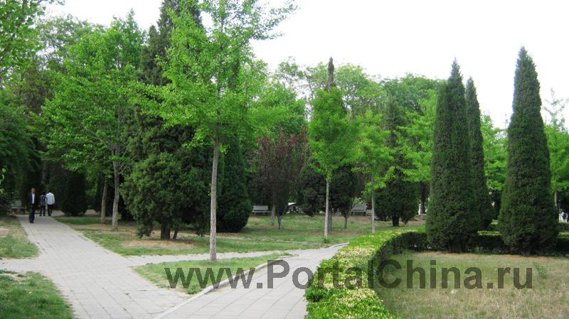 Яньшаньский Университет (18)