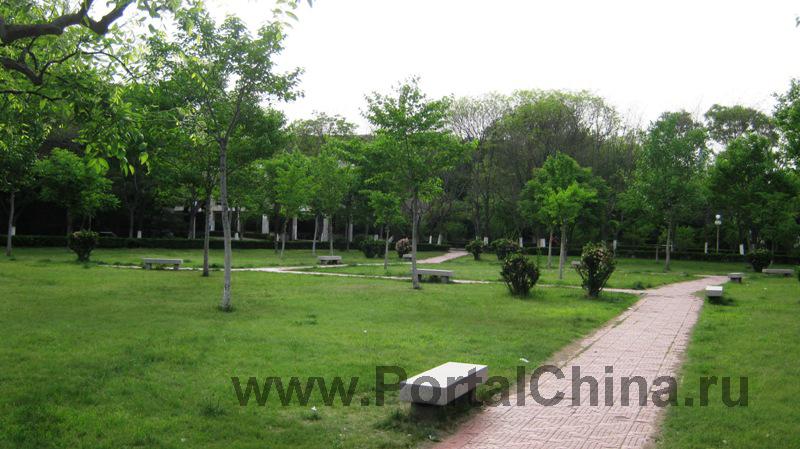 Яньшаньский Университет (19)