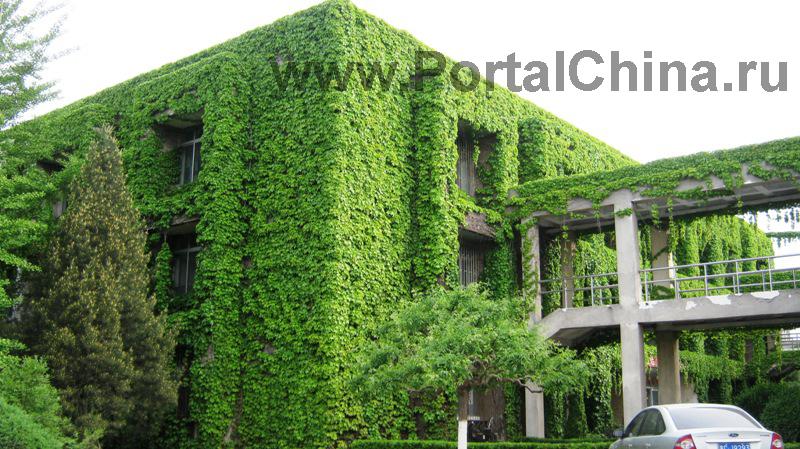 Яньшаньский Университет (20)