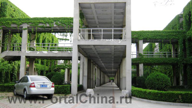 Яньшаньский Университет (21)