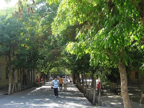 Университетский кампус Синьцзянского Университета занимает территорию 1,640 тысяч кв.м.