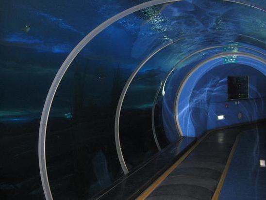 Qingdao Underwater World