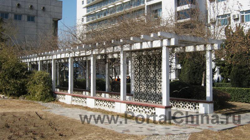 Пекинский Международный Колледж Искусств (18)