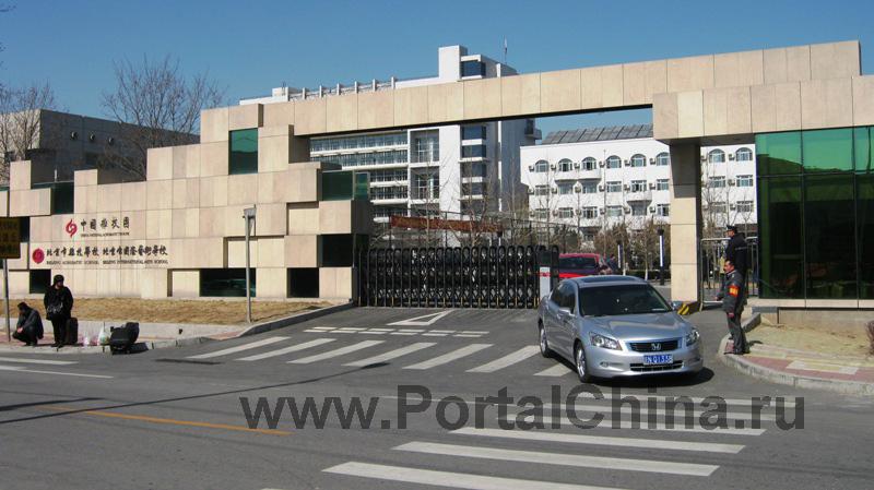 Пекинский Международный Колледж Искусств (34)